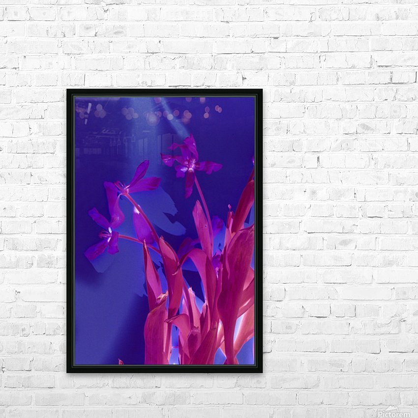 REVERSE TULIPS HD Sublimation Metal print with Decorating Float Frame (BOX)