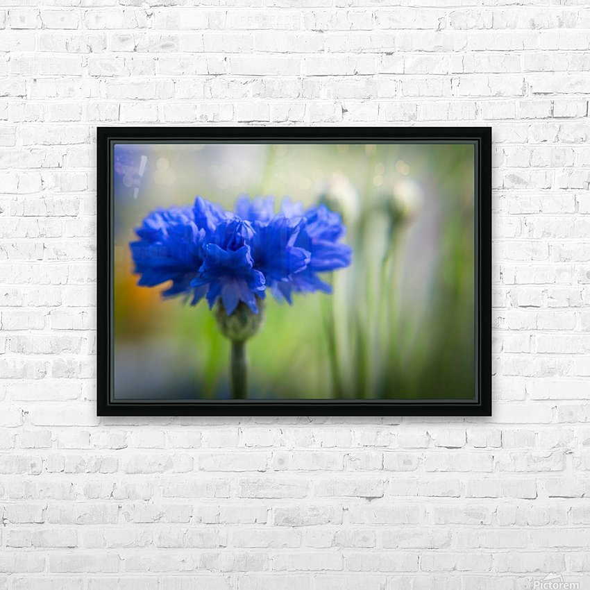 The Neighbour - La Voisine HD Sublimation Metal print with Decorating Float Frame (BOX)