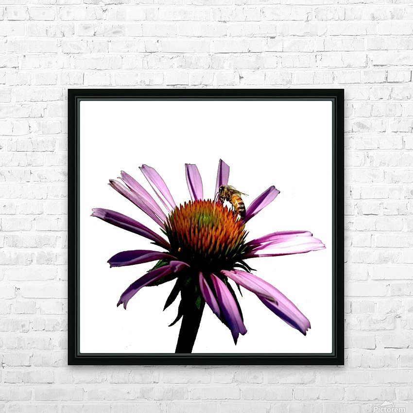 Daisy Bee HD Sublimation Metal print with Decorating Float Frame (BOX)