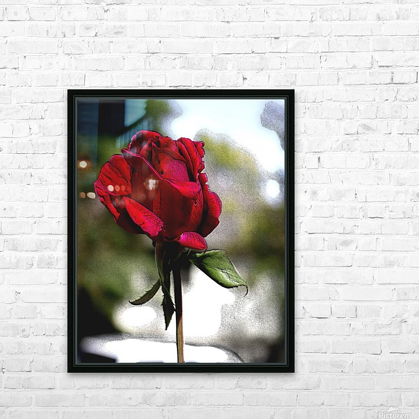 Posterized Rose  HD Sublimation Metal print with Decorating Float Frame (BOX)