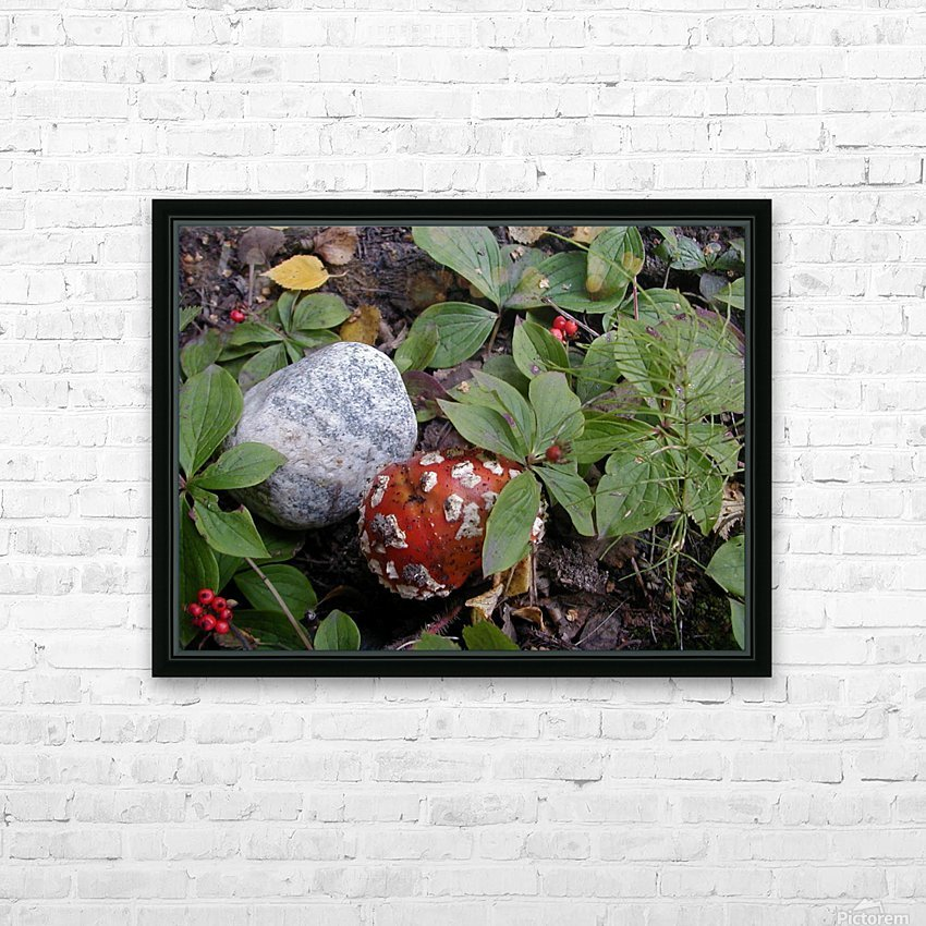 Red Mushroom & Rock HD Sublimation Metal print with Decorating Float Frame (BOX)