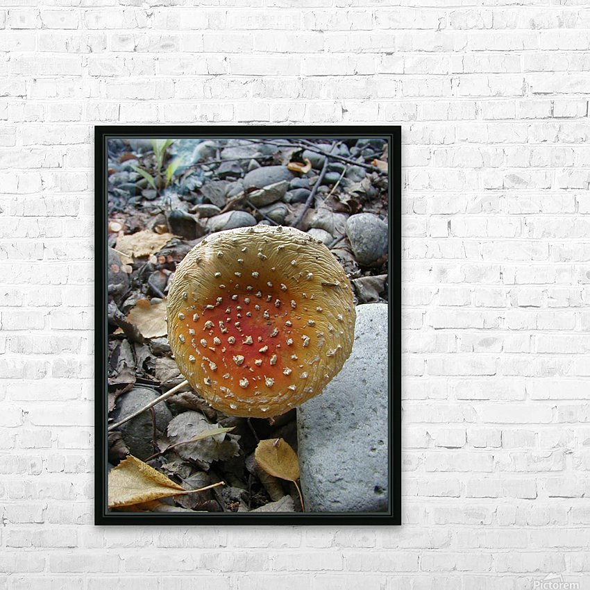 Red Mushroom HD Sublimation Metal print with Decorating Float Frame (BOX)