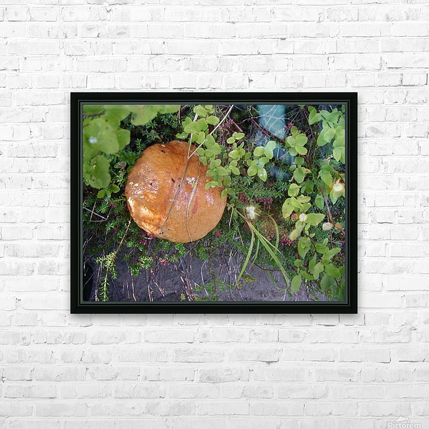Bisquit Mushroom HD Sublimation Metal print with Decorating Float Frame (BOX)
