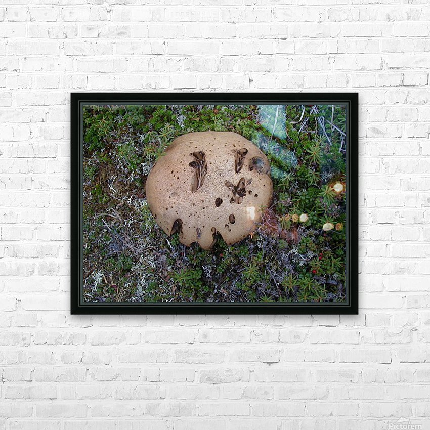 Cookie Mushroom HD Sublimation Metal print with Decorating Float Frame (BOX)