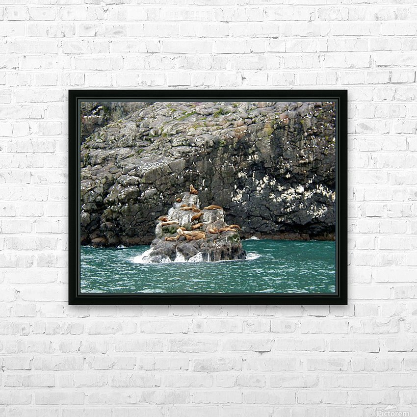 Seals HD Sublimation Metal print with Decorating Float Frame (BOX)