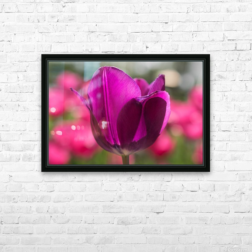 Violet - Violette HD Sublimation Metal print with Decorating Float Frame (BOX)