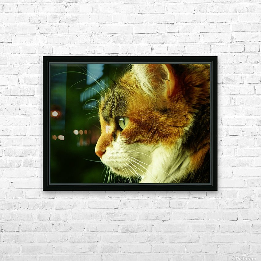 A (6) HD Sublimation Metal print with Decorating Float Frame (BOX)
