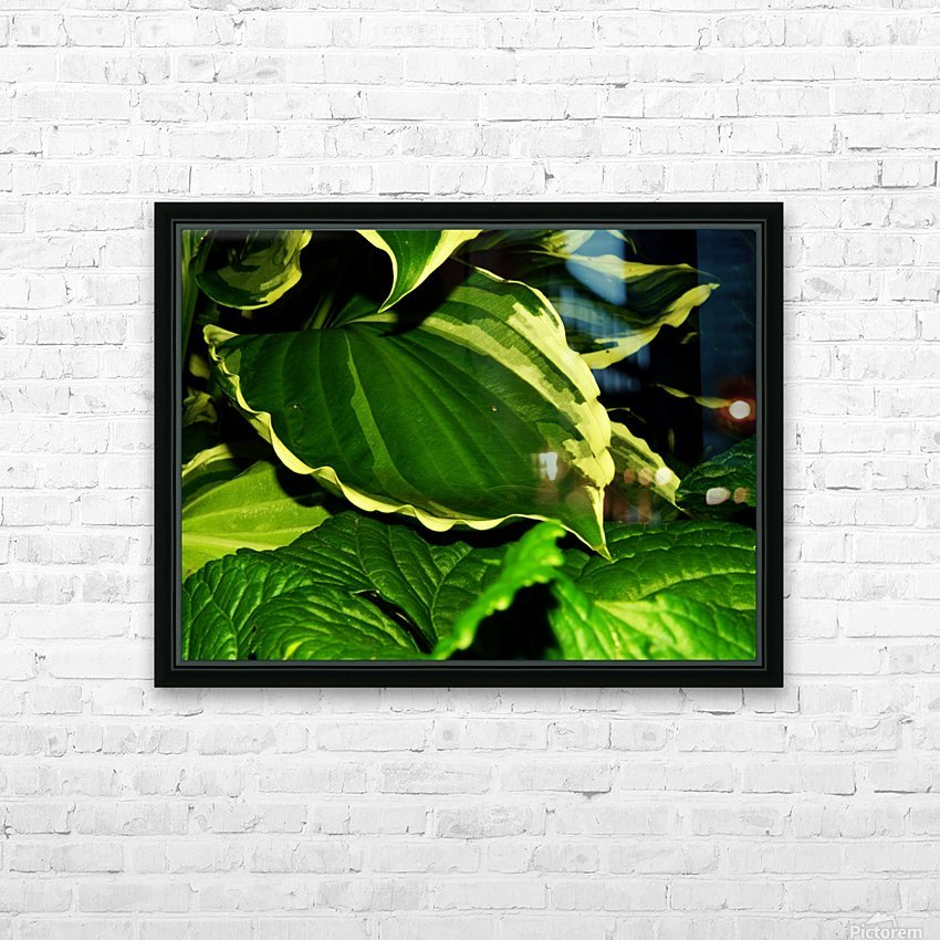 C (9) HD Sublimation Metal print with Decorating Float Frame (BOX)