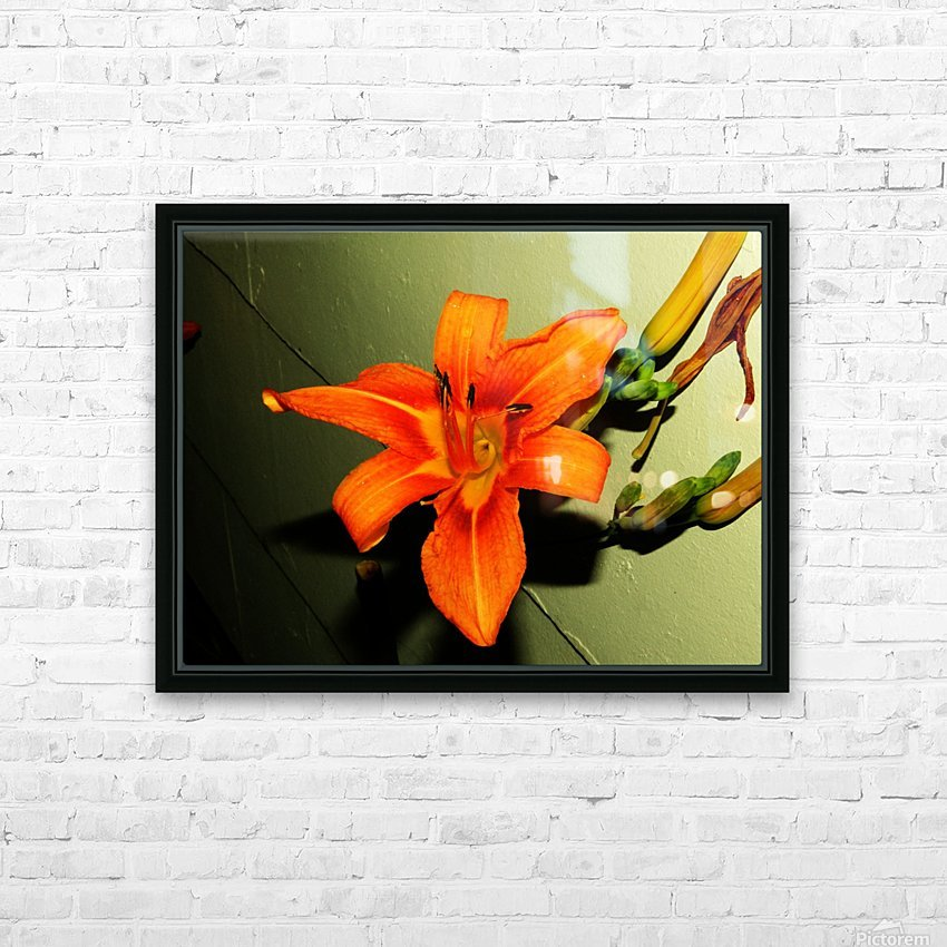 C (8) HD Sublimation Metal print with Decorating Float Frame (BOX)