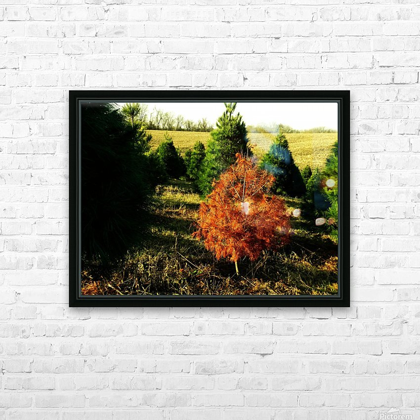 C (4) HD Sublimation Metal print with Decorating Float Frame (BOX)