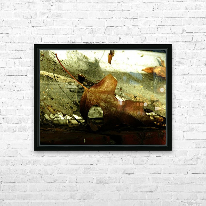 D (1) HD Sublimation Metal print with Decorating Float Frame (BOX)