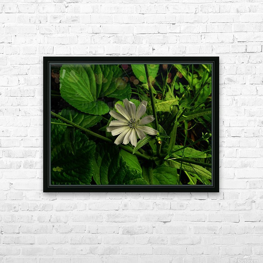F (12) HD Sublimation Metal print with Decorating Float Frame (BOX)