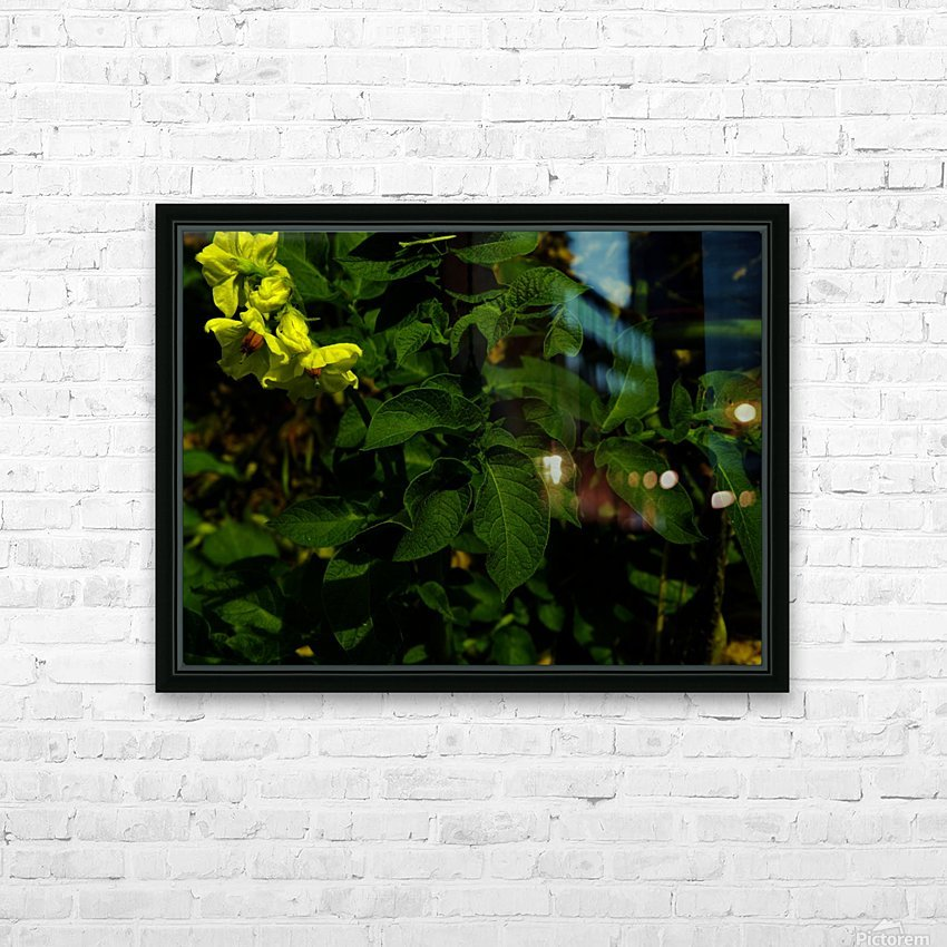 F (10) HD Sublimation Metal print with Decorating Float Frame (BOX)