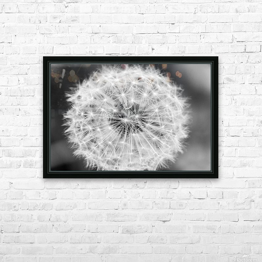 Dandylion black and White HD Sublimation Metal print with Decorating Float Frame (BOX)