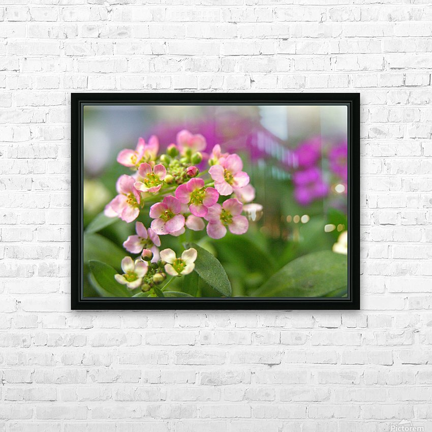 Small Pink Flowers Photography HD Sublimation Metal print with Decorating Float Frame (BOX)