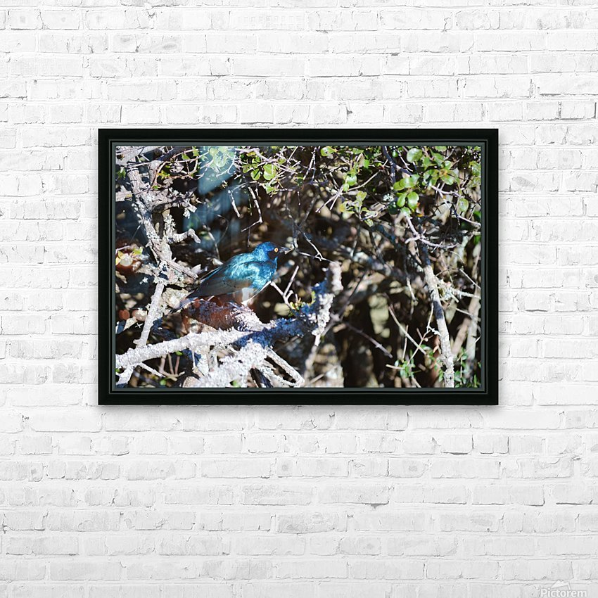 Blue Reflective Bird HD Sublimation Metal print with Decorating Float Frame (BOX)
