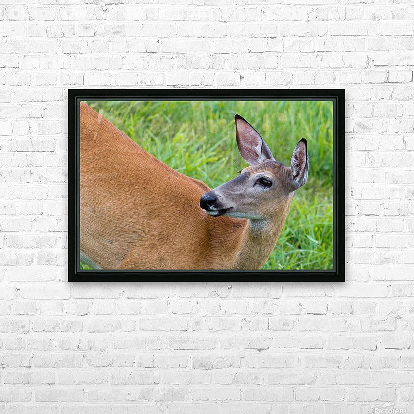 Summer Doe HD Sublimation Metal print with Decorating Float Frame (BOX)