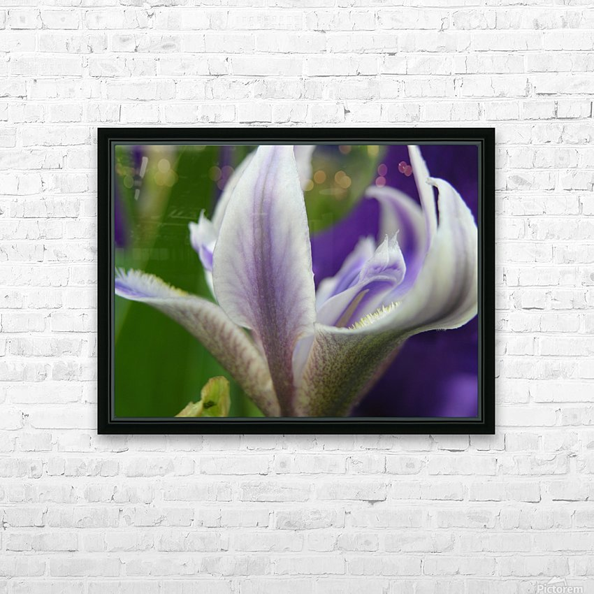 Purple Flower Photography HD Sublimation Metal print with Decorating Float Frame (BOX)