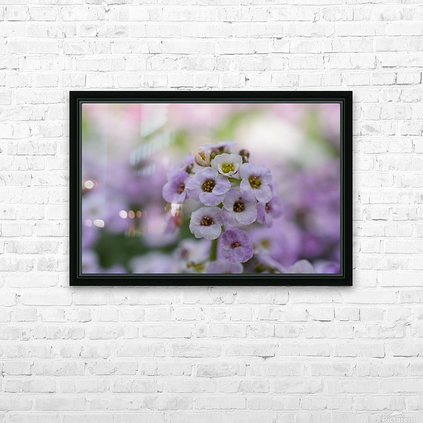Small Purple White Flower Photograph HD Sublimation Metal print with Decorating Float Frame (BOX)