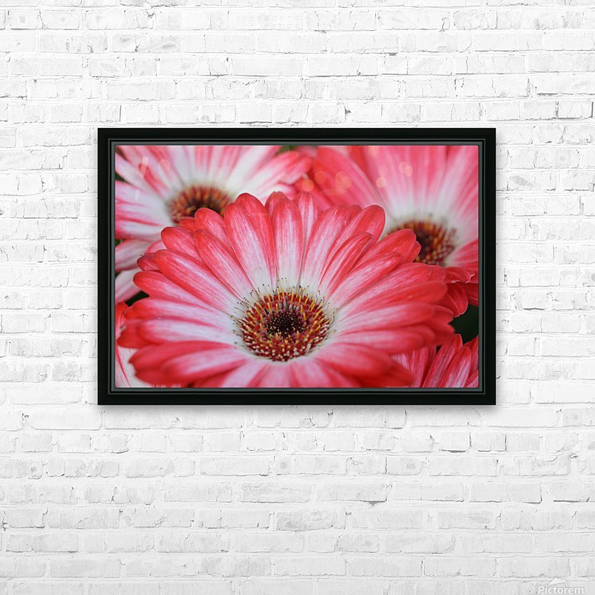 Red & White Flower Photograph HD Sublimation Metal print with Decorating Float Frame (BOX)
