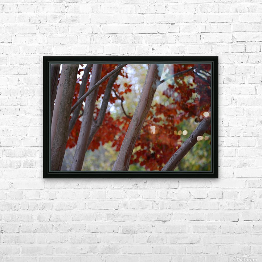 Fall Foliage Photograph HD Sublimation Metal print with Decorating Float Frame (BOX)