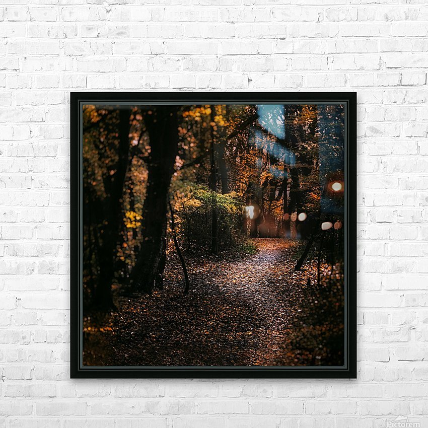 Forest 2_OSG HD Sublimation Metal print with Decorating Float Frame (BOX)