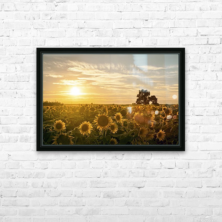 facing the sun HD Sublimation Metal print with Decorating Float Frame (BOX)