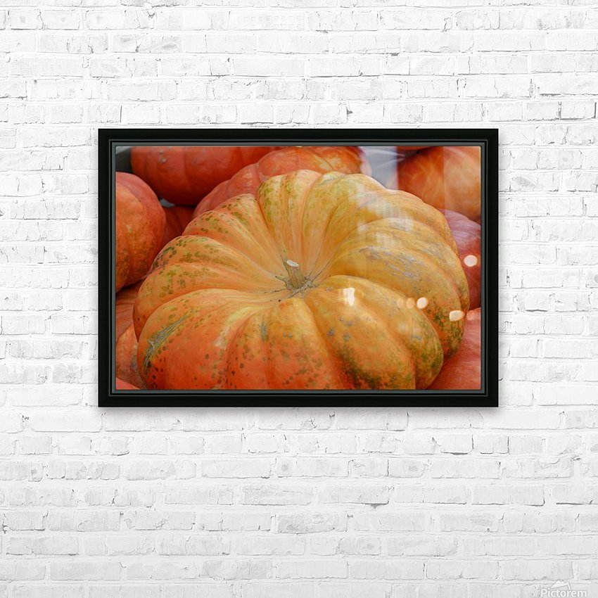 Beautiful Pumpkins Photograph HD Sublimation Metal print with Decorating Float Frame (BOX)