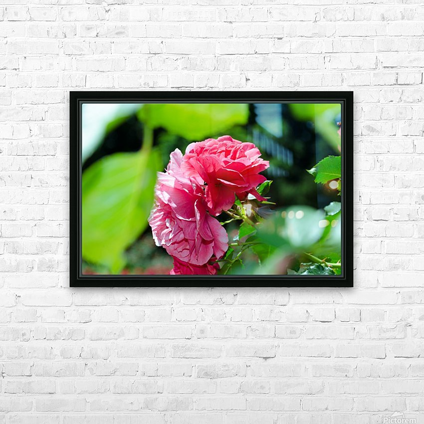 Rose Name HD Sublimation Metal print with Decorating Float Frame (BOX)