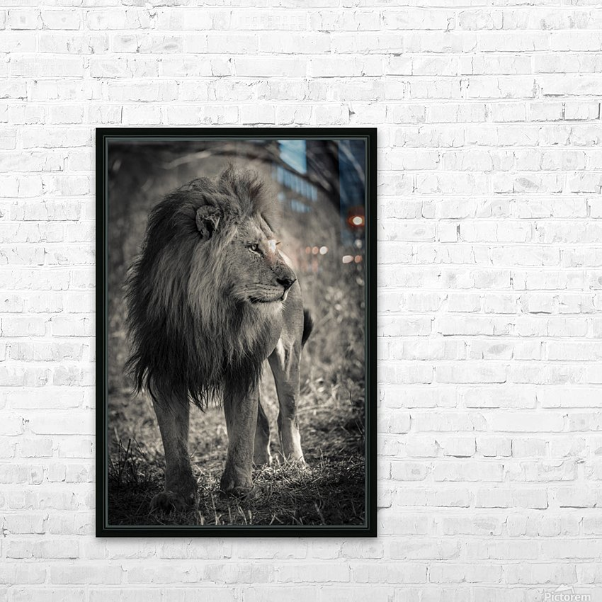 The King of South Africa - 3 HD Sublimation Metal print with Decorating Float Frame (BOX)