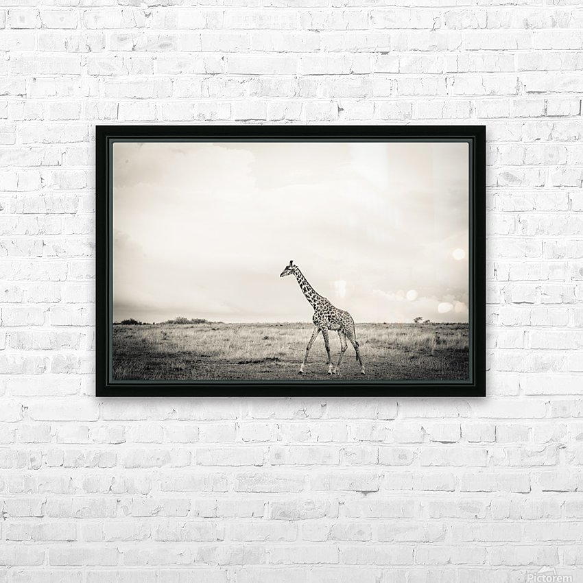 Zebrascape HD Sublimation Metal print with Decorating Float Frame (BOX)