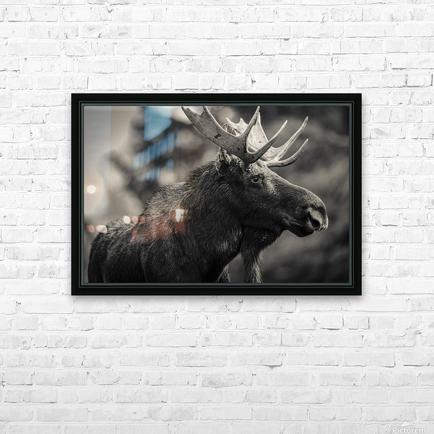 Moose Portrait - 2 HD Sublimation Metal print with Decorating Float Frame (BOX)