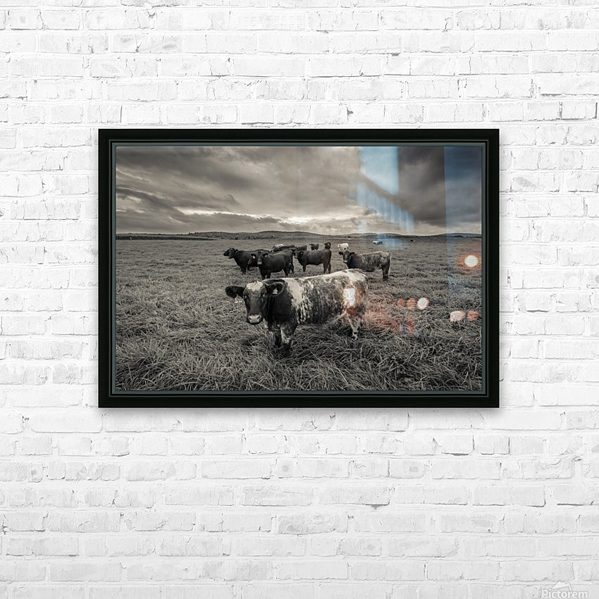 Cowscape HD Sublimation Metal print with Decorating Float Frame (BOX)