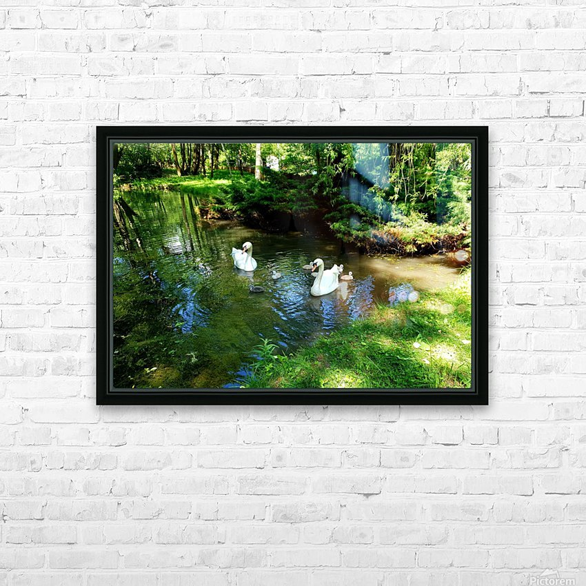 swan 6 HD Sublimation Metal print with Decorating Float Frame (BOX)