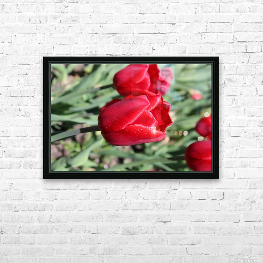 Tulips Red HD Sublimation Metal print with Decorating Float Frame (BOX)