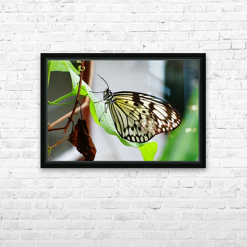 Resting Butterfly HD Sublimation Metal print with Decorating Float Frame (BOX)