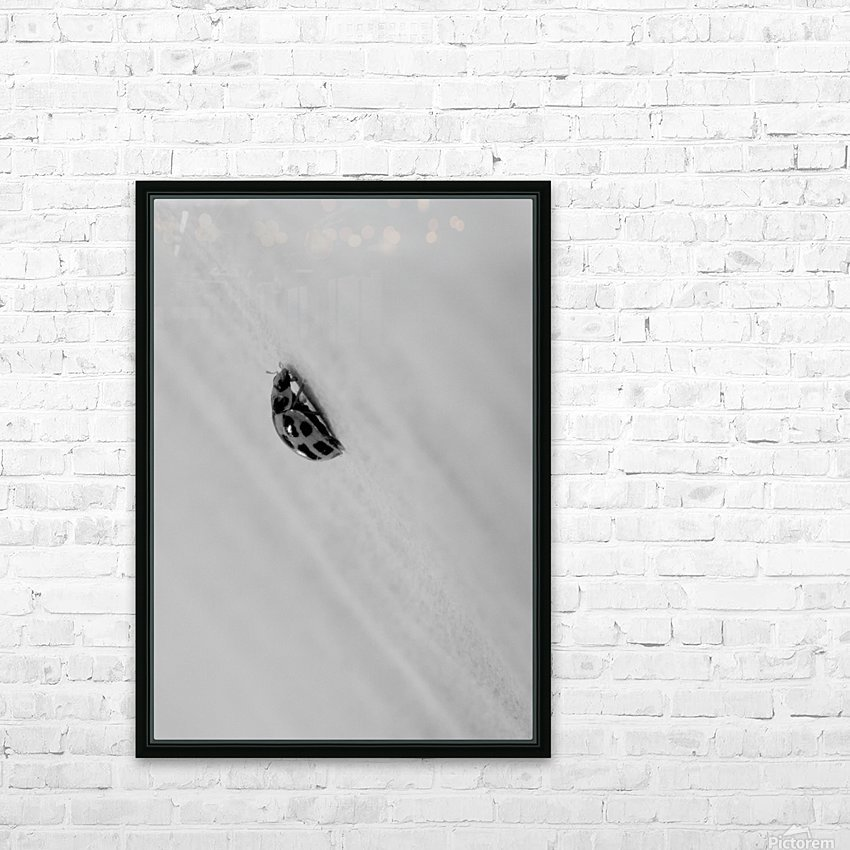 Nature 017 HD Sublimation Metal print with Decorating Float Frame (BOX)