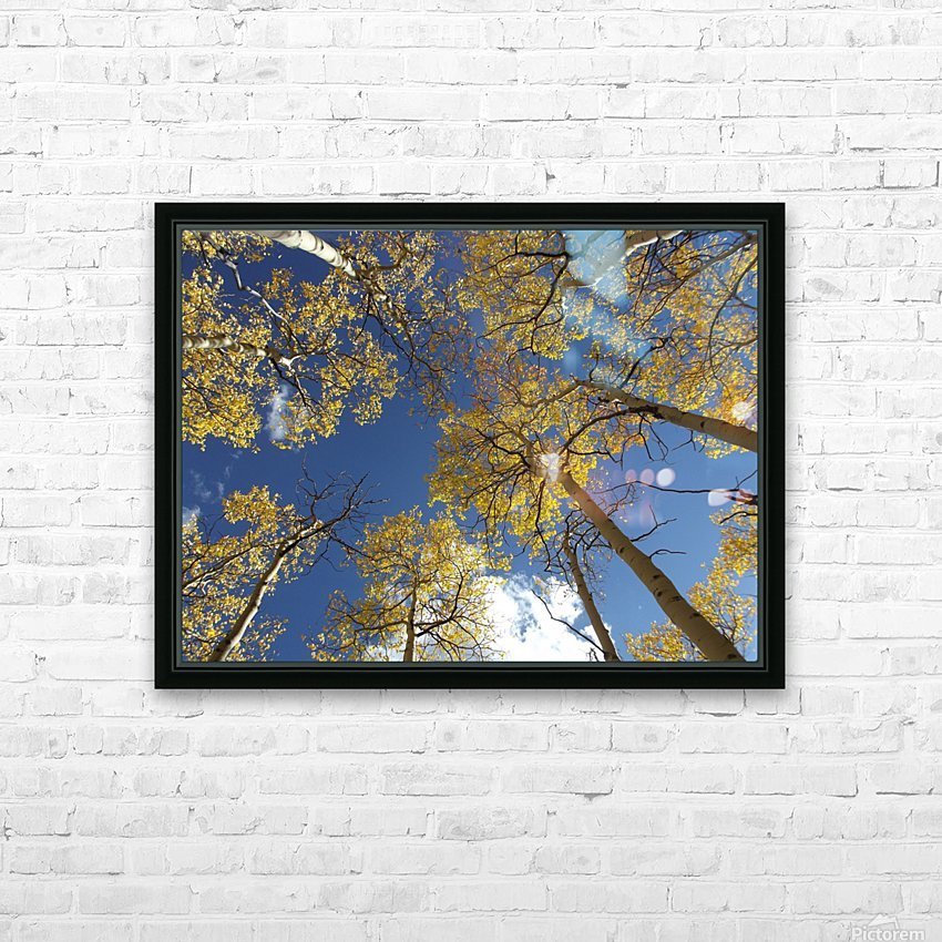 Aspens To Heaven HD Sublimation Metal print with Decorating Float Frame (BOX)