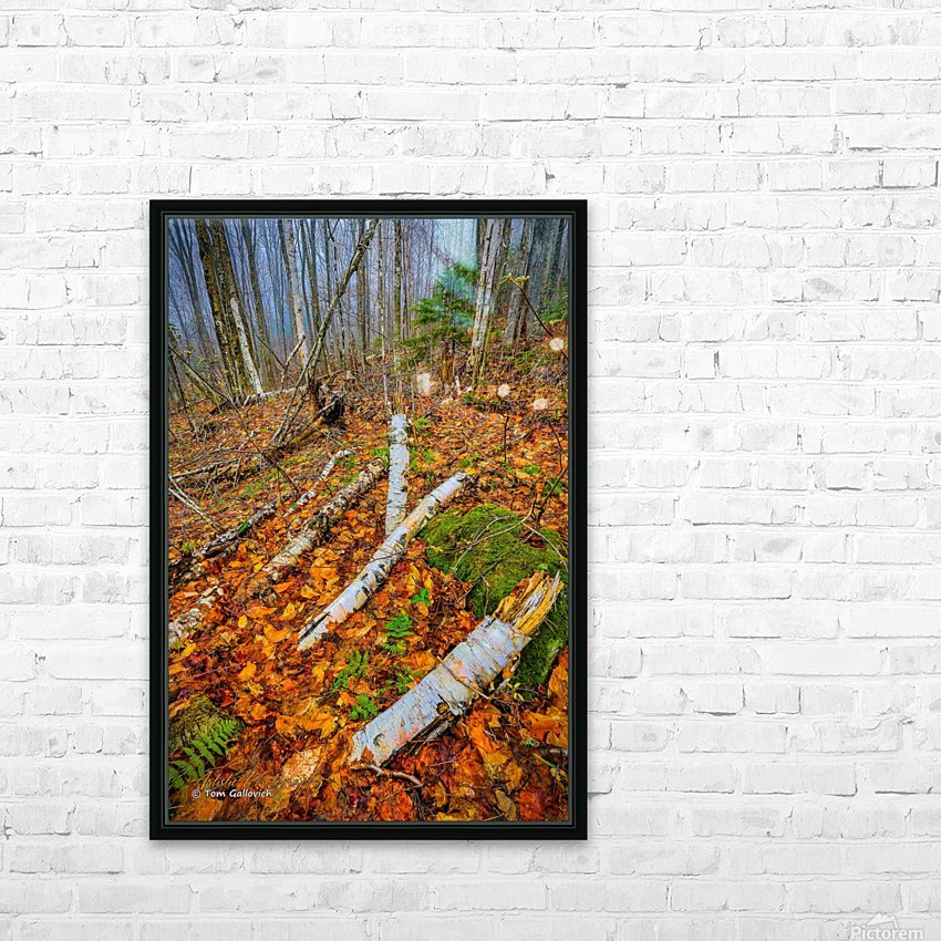 White Birch - APC-261 HD Sublimation Metal print with Decorating Float Frame (BOX)