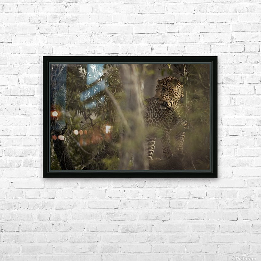 Ghosts of the Serengeti HD Sublimation Metal print with Decorating Float Frame (BOX)