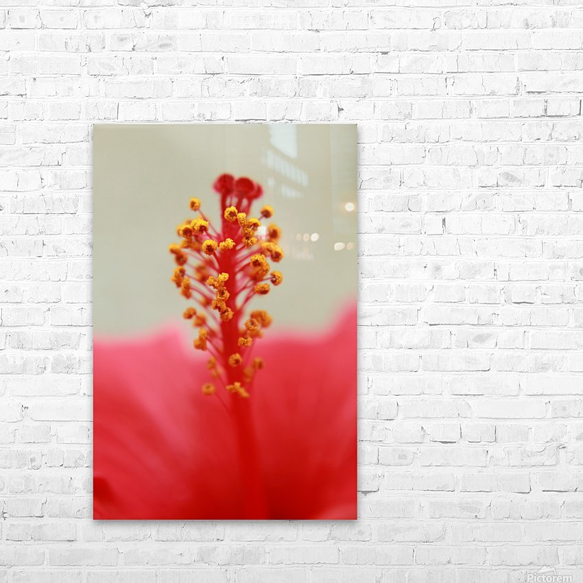 Hibiscus detail HD Sublimation Metal print with Decorating Float Frame (BOX)