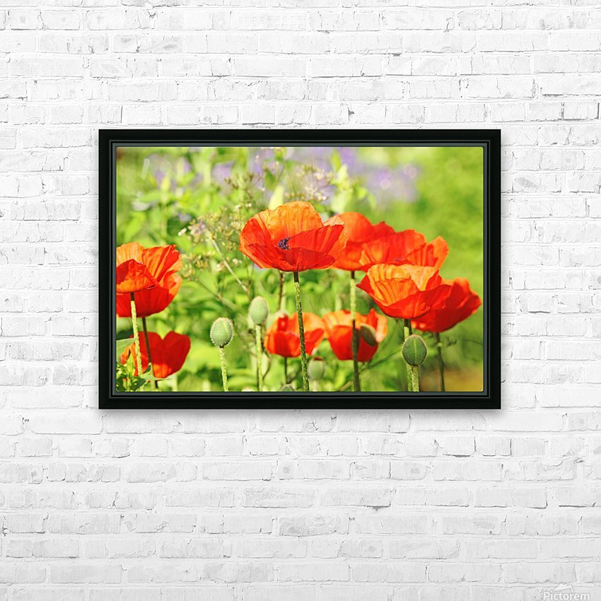 Poppy Garden HD Sublimation Metal print with Decorating Float Frame (BOX)