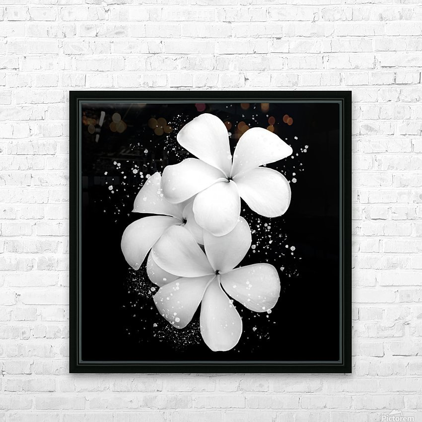 White Petunias  HD Sublimation Metal print with Decorating Float Frame (BOX)