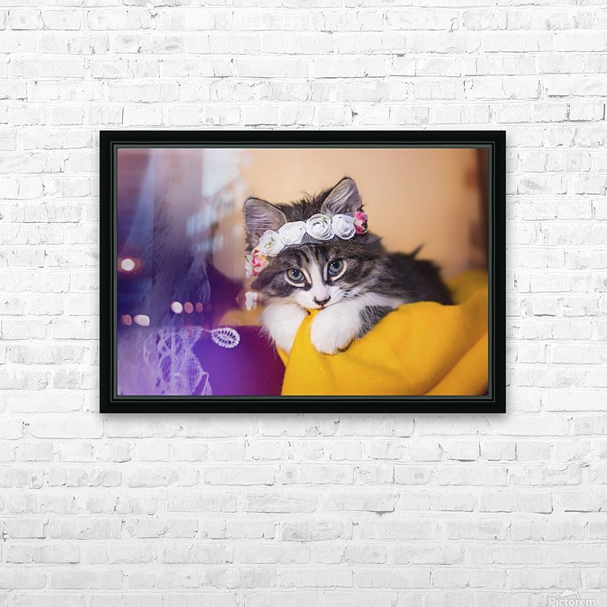 Murmur 1 HD Sublimation Metal print with Decorating Float Frame (BOX)