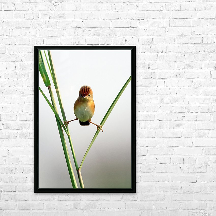 Kung Fu Master HD Sublimation Metal print with Decorating Float Frame (BOX)