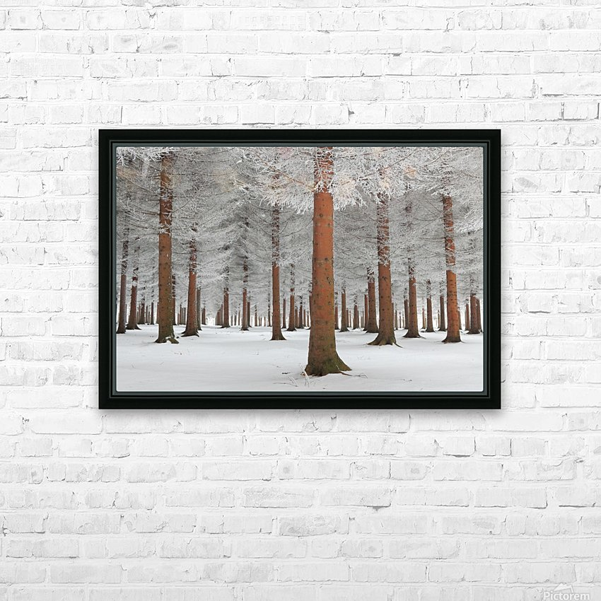 magical forest HD Sublimation Metal print with Decorating Float Frame (BOX)