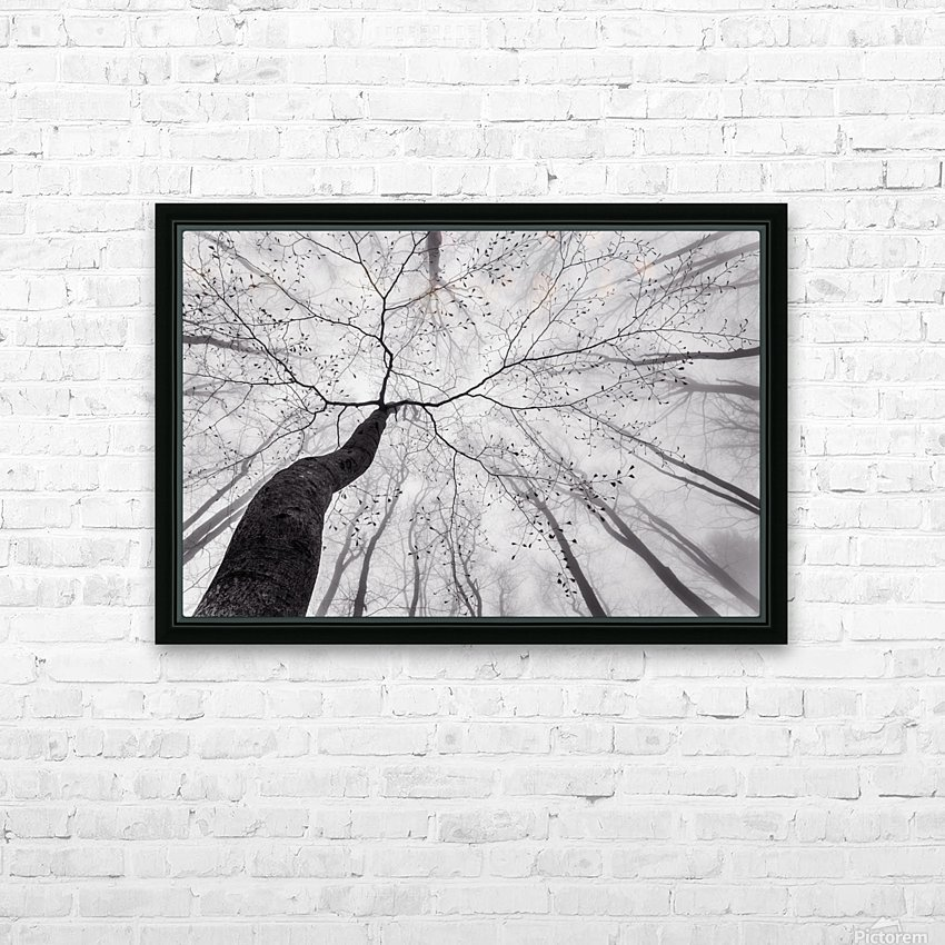 A view of the tree crown HD Sublimation Metal print with Decorating Float Frame (BOX)