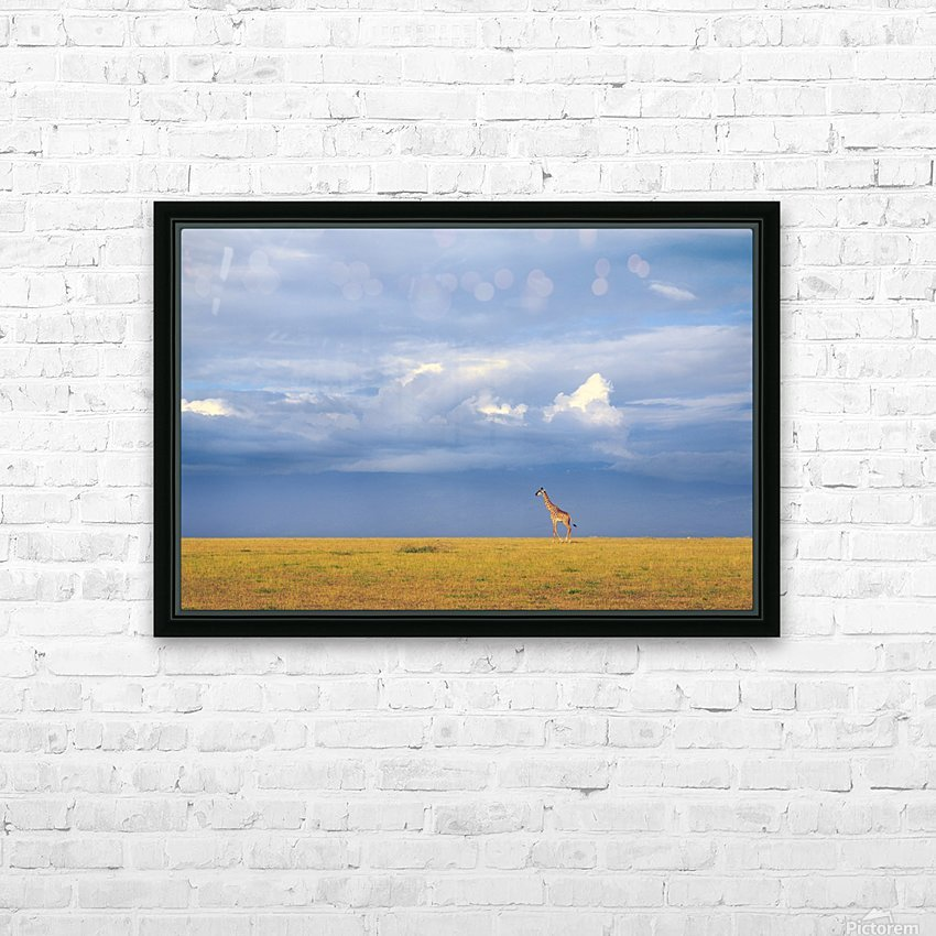 Colors of freedom HD Sublimation Metal print with Decorating Float Frame (BOX)