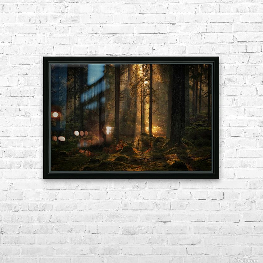 The light in the forest HD Sublimation Metal print with Decorating Float Frame (BOX)