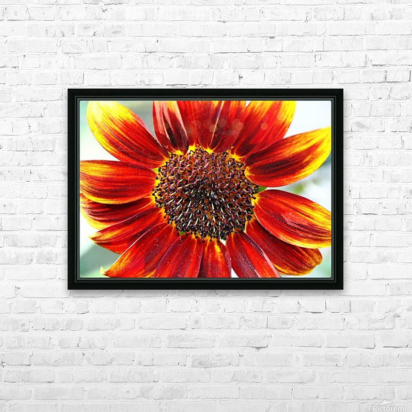 Autumn Sunflower HD Sublimation Metal print with Decorating Float Frame (BOX)